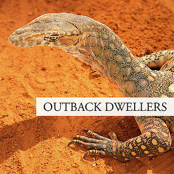 Outback Dwellers by Rob D Imagery