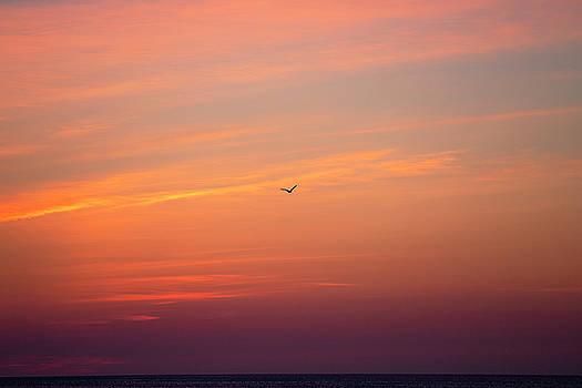 Outer Banks Sunrise 24 by David Stasiak