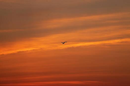 Outer Banks Sunrise 26 by David Stasiak