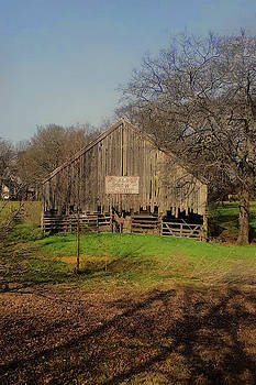 Ovilla Old Barn in Spring by Warren Gale