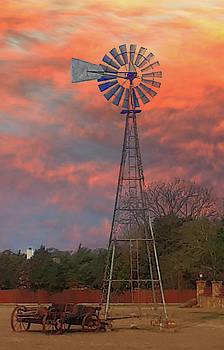 Ovilla Windmill by Warren Gale