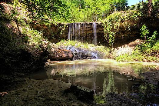 Susan Rissi Tregoning - Owens Creek Waterfall