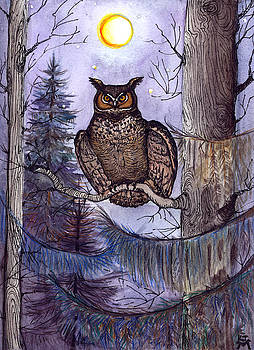 Owl Amid The Evergreen by Katherine Miller