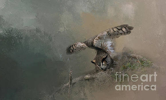 Owl Stretch by Marvin Spates