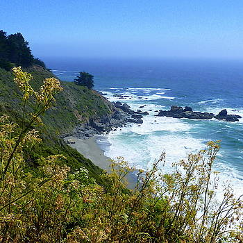 Pacific Coast Beauty by Carla Parris