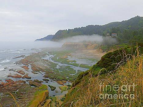 Pacific Coast Oregon by Art Sandi