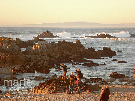 Pacific Grove Photographers by Marte Thompson