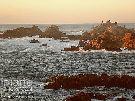 Pacific Grove Sunset 2 by Marte Thompson