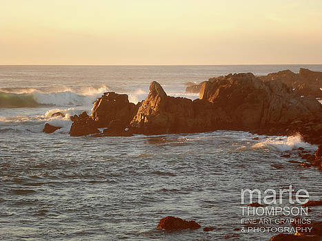Pacific Grove Sunset Rocks by Marte Thompson