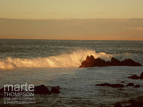 Pacific Grove Sunset Wave by Marte Thompson