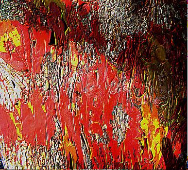 Pacific Madrone Bark - Tree by Marie Jamieson