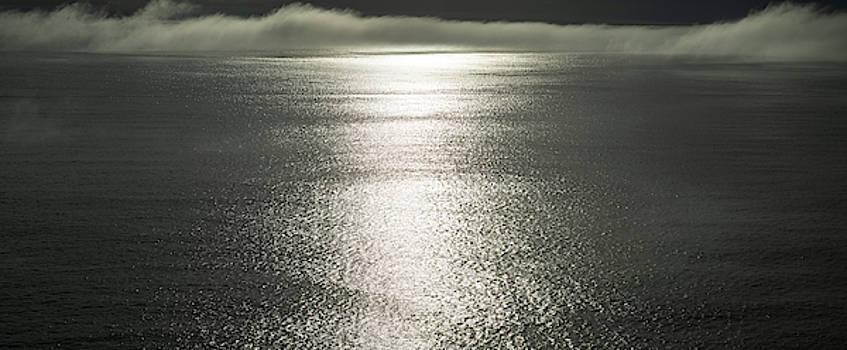 Pacific Ocean Fog Panorama by Steve Gadomski