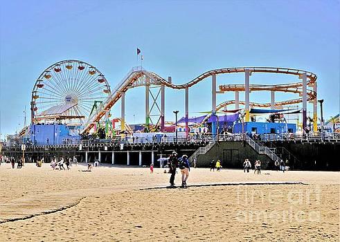 Diann Fisher - Pacific Park from Santa Monica Beach