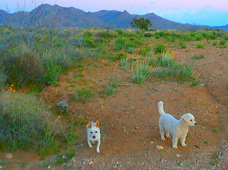 Paco and Cesar Love The Desert by James Welch