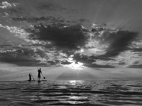 Paddledream by Andrew Royston