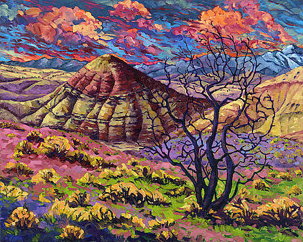 Painted Hills by Rebecca Baldwin