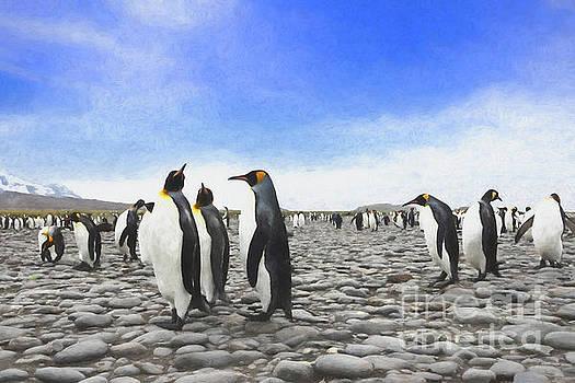 Painted Penguins by Patti Schulze