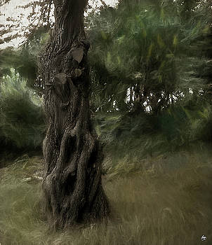 Painted Wind in the Cedar by Wayne King