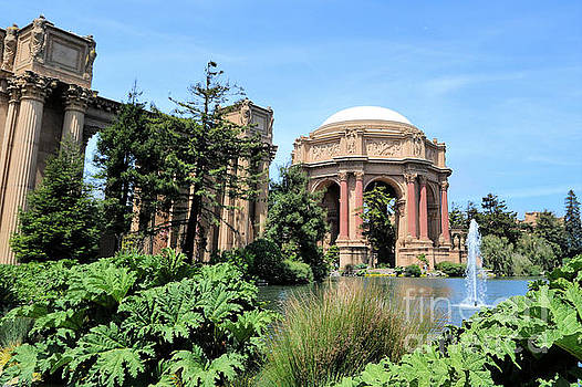 Diann Fisher - Palace Of Fine Arts