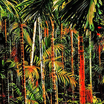 Palm trees by AE collections