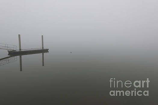 Dale Powell - Palmetto Rolling Fog