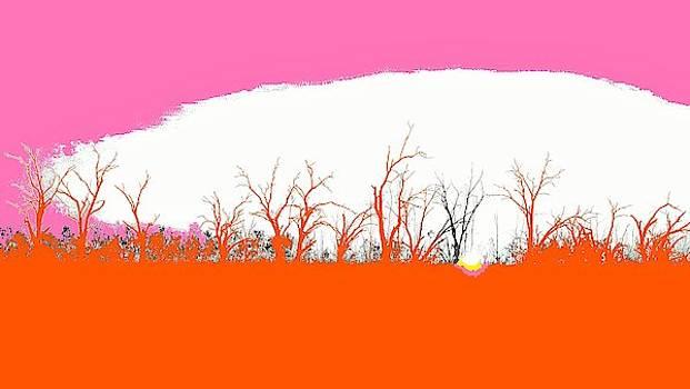 Pamamaroo Sunset #4 - Pop Art by Lexa Harpell