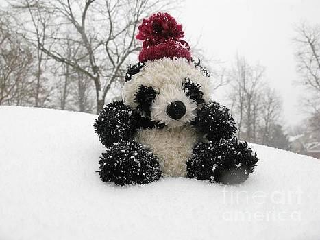 Panda On The Snowy Day by Ausra Huntington nee Paulauskaite