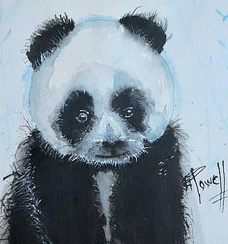 Panda Sammy by George Powell