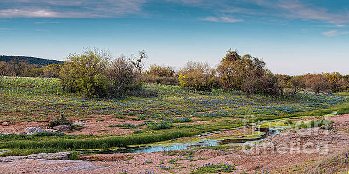 Panorama of Creek Running through Ship Hollow at Willow City Loop  Fredericksburg Texas Hill Country by Silvio Ligutti