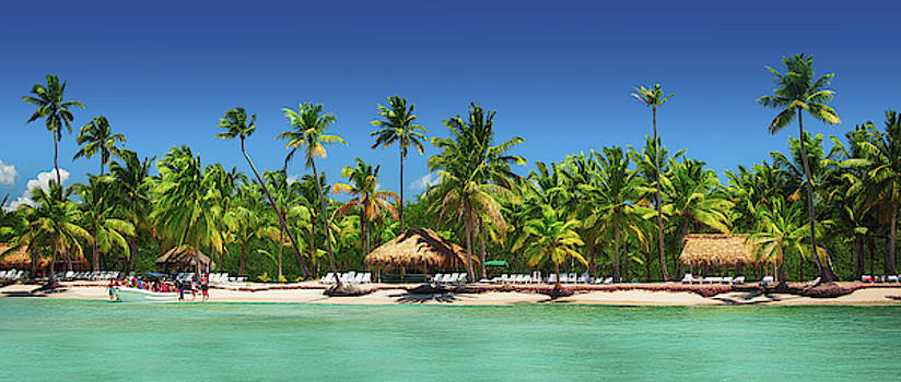 Panoramic view of Exotic Palm trees on the tropical beach by Valentin Valkov
