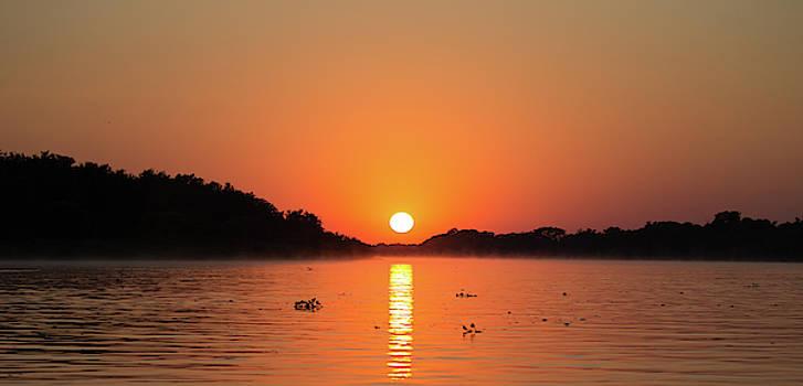 Max Waugh - Pantanal Sunrise