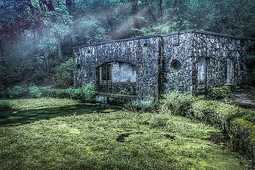 Paradise Springs by Brad Bellisle