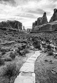 Park Avenue Trail Arches National Park by Stephanie McDowell