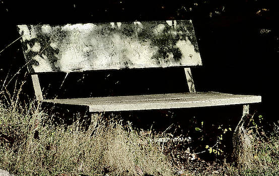 Park Bench by Marie Jamieson