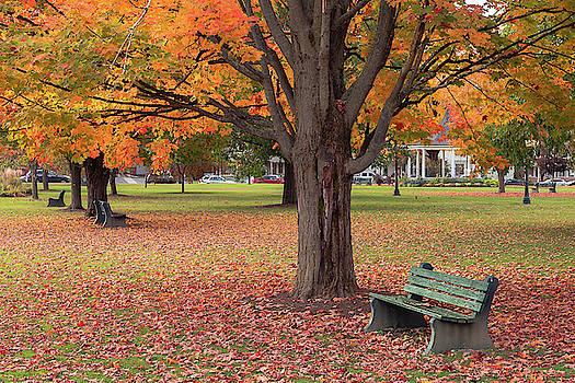 Park Bench by Tim Kirchoff