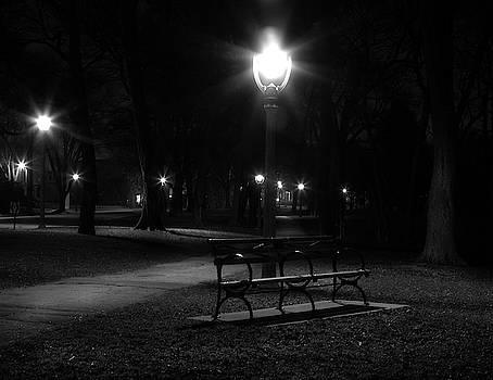 Park Lights by Steve Bell