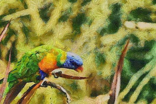 Parrot Paradise by Harry Warrick