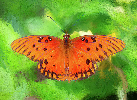 Passion Butterfly - Painterly by Debra Martz