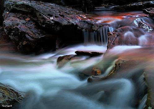 Passion of Water by Wesley Nesbitt