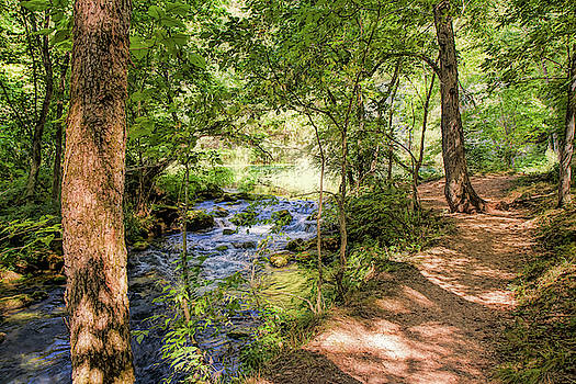 Path Along Alley Springs by John M Bailey