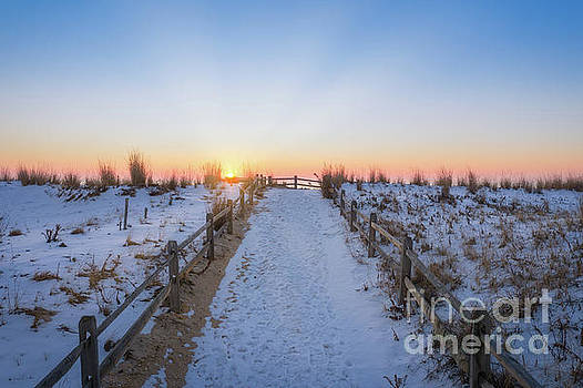 Path To Sunshine  by Michael Ver Sprill