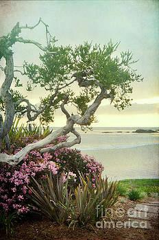 Path to the Beach by Jill Battaglia