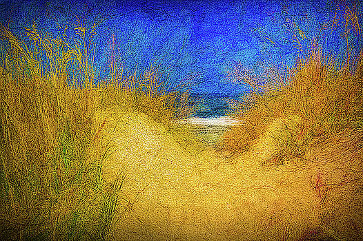 Path To The Beach by Robert Meyerson