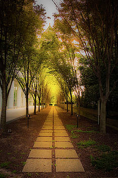 Pathway by Kenny Thomas
