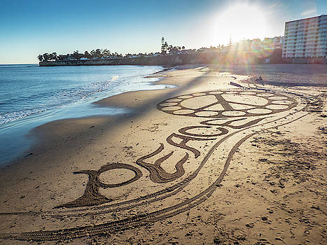 Mary Lee Dereske - Peace on Beach