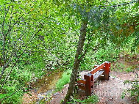 Peaceful Setting Revelstoke National Park British Columbia Canada by Art Sandi