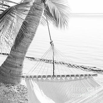 Tim Hester - Peaceful Vacation Hammock Black and White