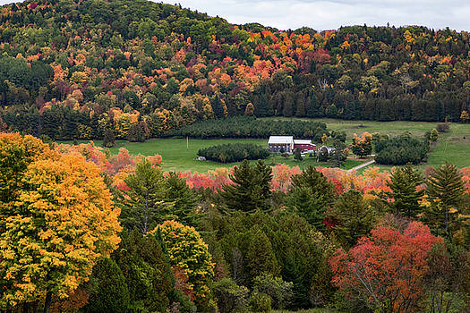 Peacham Vermont Farm on a Hill by Jeff Folger