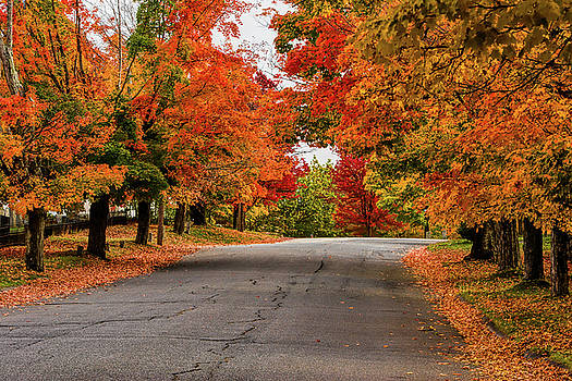 Peak Fall Colors in New Salem Massachusetts by Jeff Folger