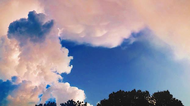 Peeking Mammatus Clouds  by Ally White